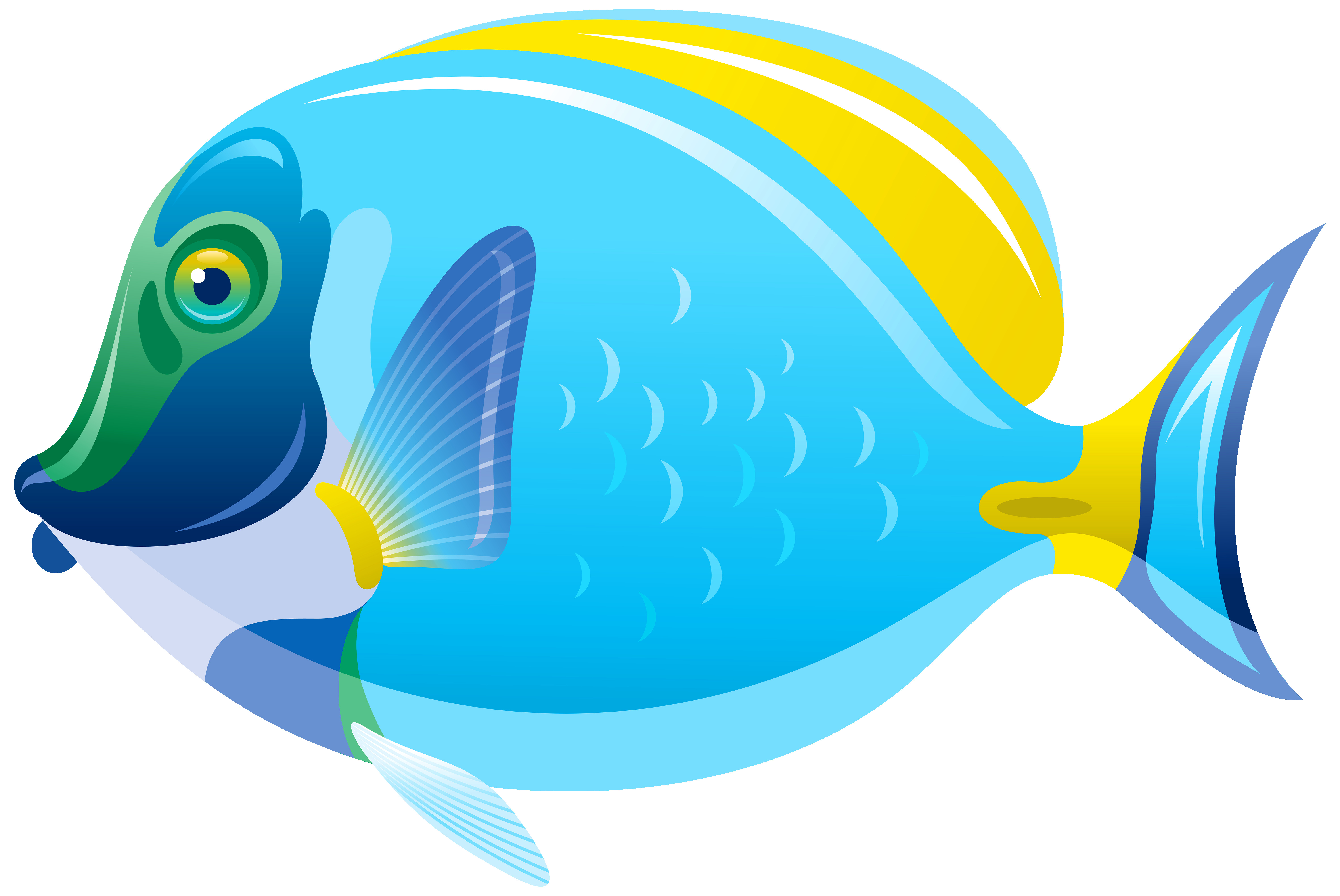 6000x4012 Cute Fish Clip Art Various Fishes Collection 3 Vector Fancy Image