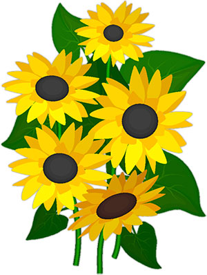 300x398 Free Sunflowers