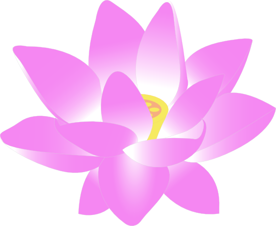 550x450 Lotus Flower Clipart Clip Art Lotus Flower Free Google Search
