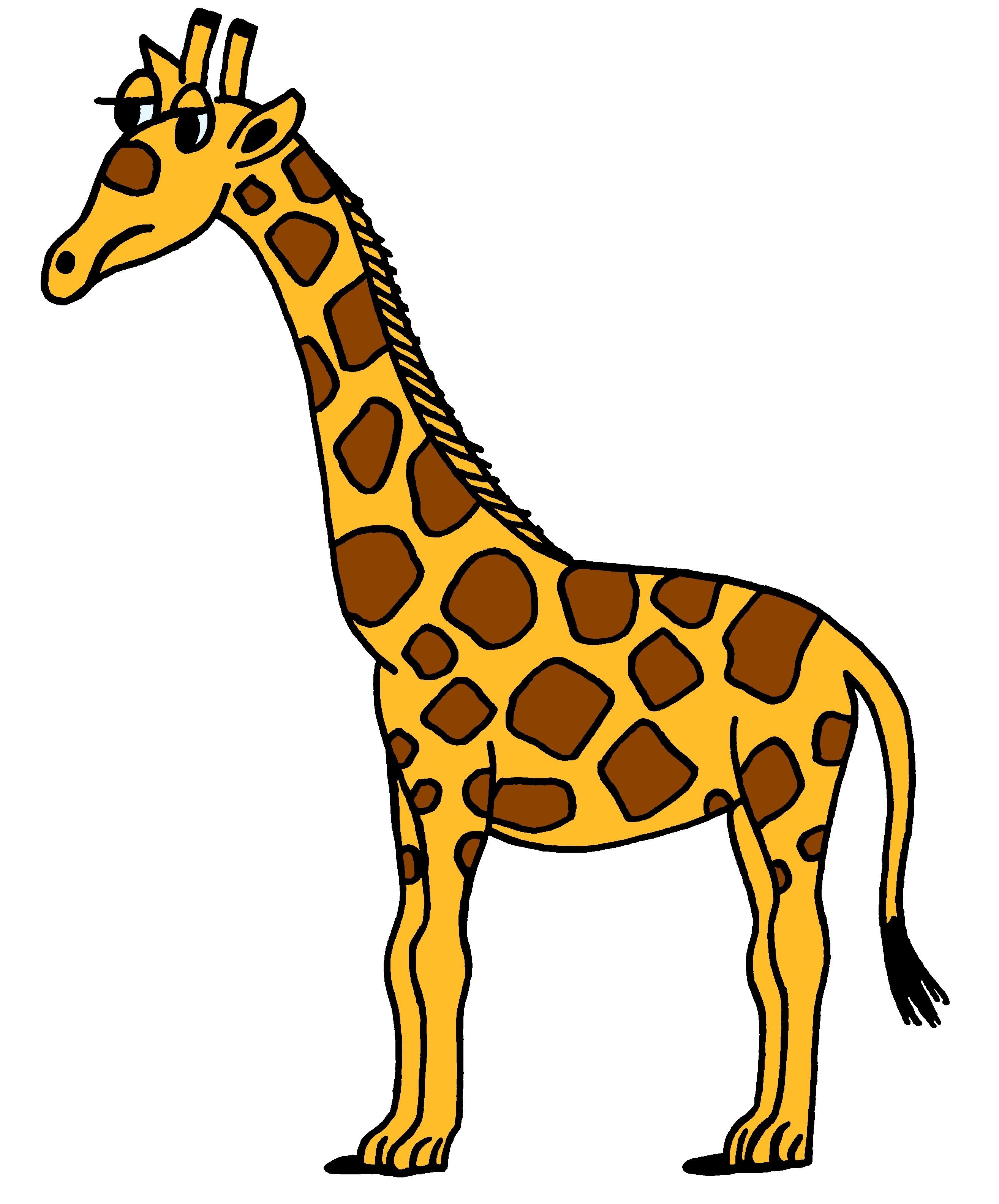 2630x3170 Free Giraffe Clipart