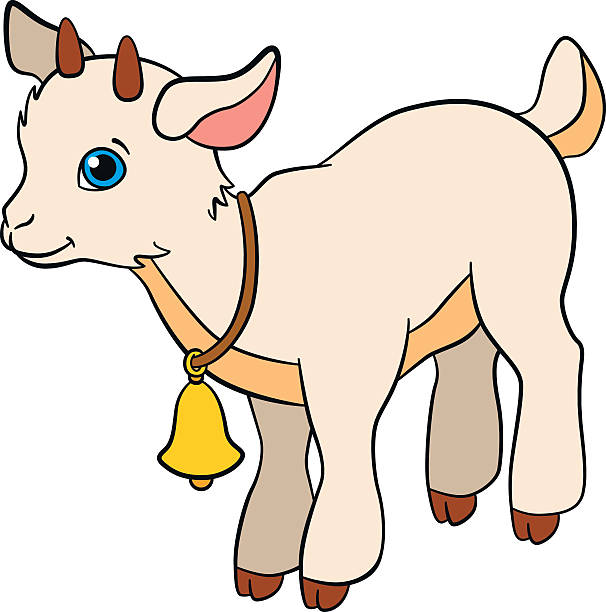 606x612 Collection Of Baby Goat Clipart High Quality, Free Cliparts
