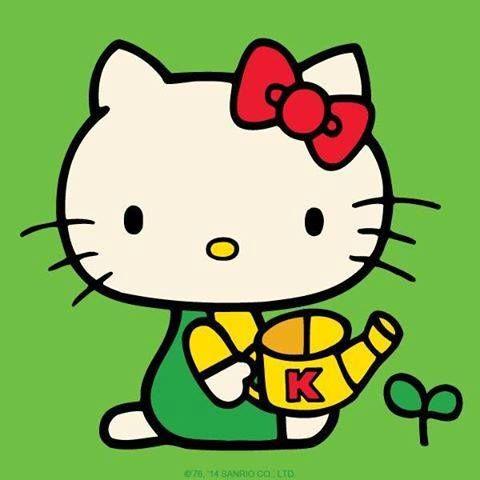 480x480 Hello Kitty Hello Kitty Amp Friends Hello Kitty