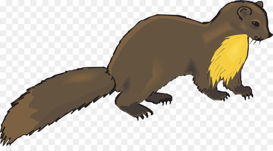 900x500 European Pine Marten Weasel Otter Mink Clip Art