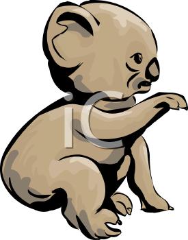 275x350 Koala Clipart Sad