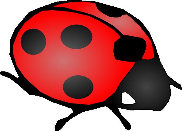 600x433 Cute Ladybug Clip Art 333428