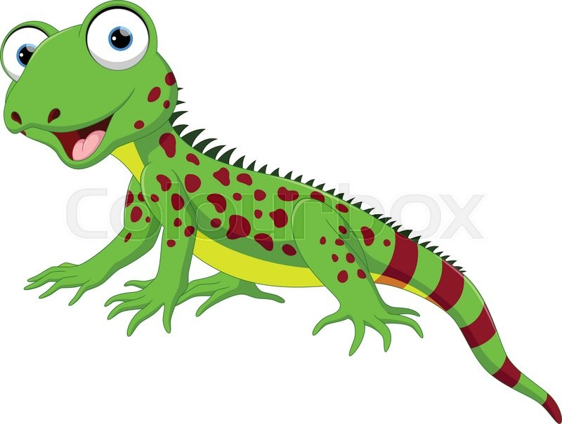 800x604 Vector illustration of Cute lizard cartoon isolated on white