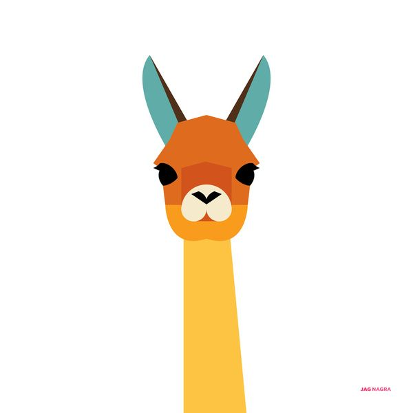 600x600 Pictures Of Llamas With Caption That Very Cute,funny