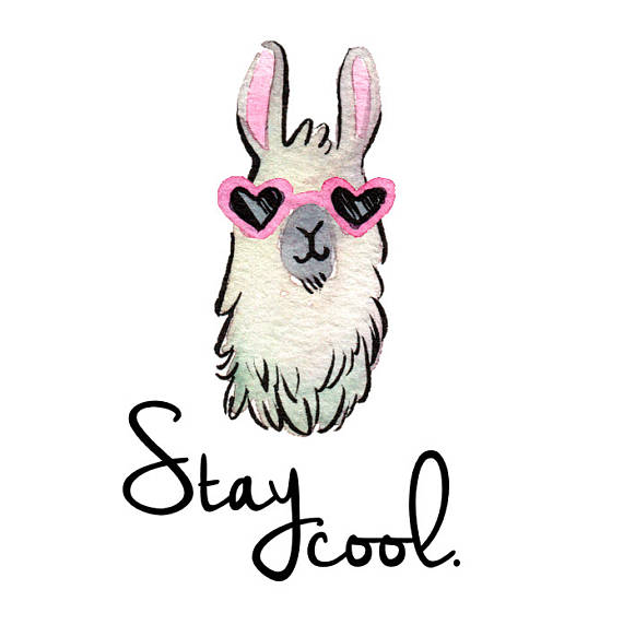 570x572 Stay Cool Coffee Mug Llama Mug Llama Gift Funny Coffee
