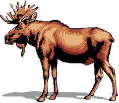 Cute Moose Clipart