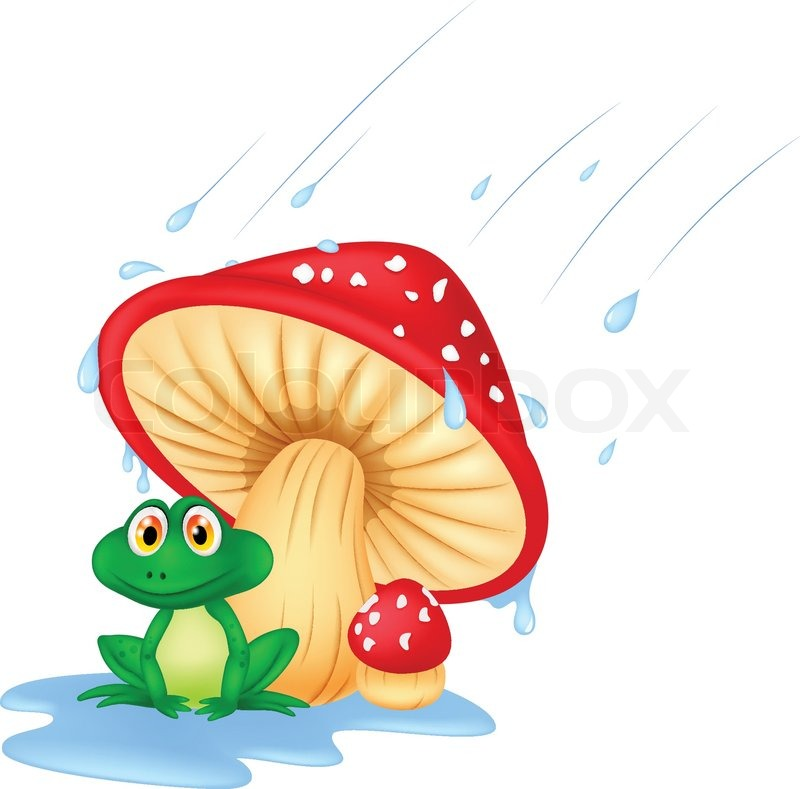 800x789 Vector Illustration Of Mushroom With A Toad Cartoon Stock Vector