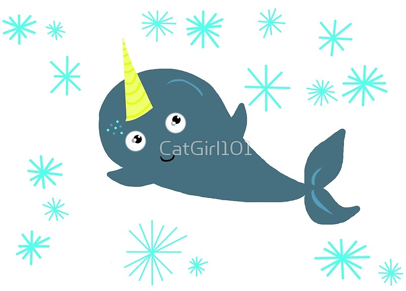 800x574 Cute Narwhal! Posters By Catgirl101 Redbubble