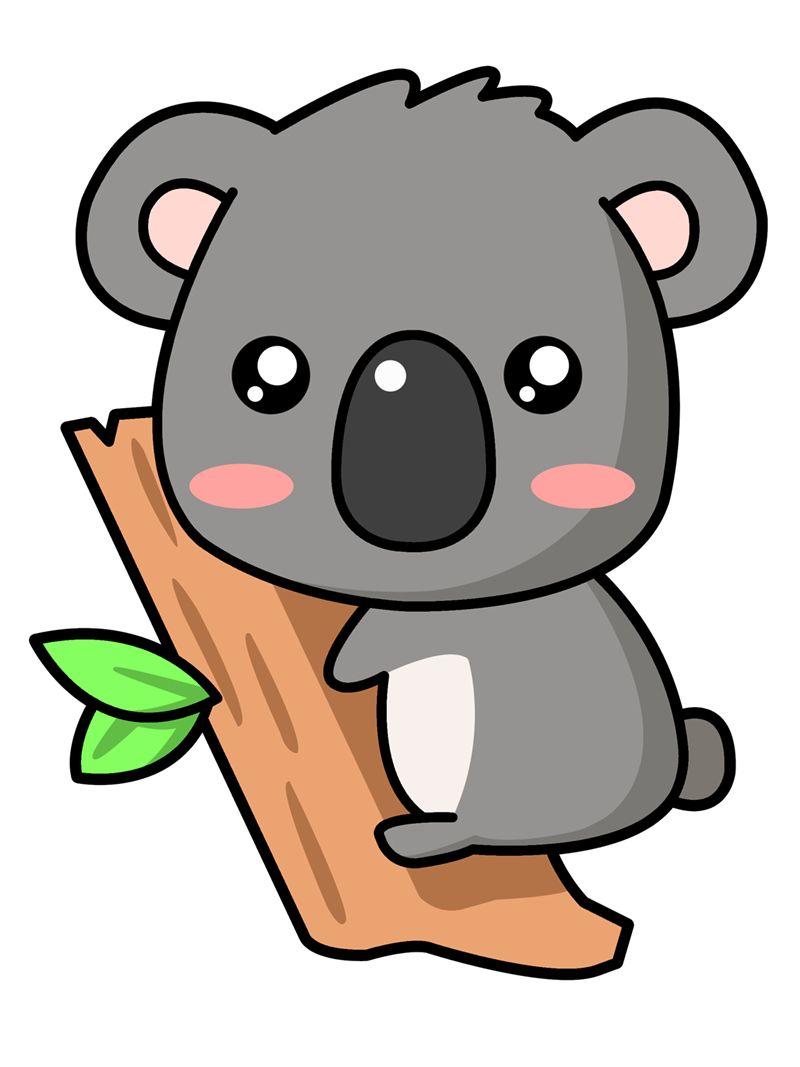 800x1067 A Cute Koala Koalas
