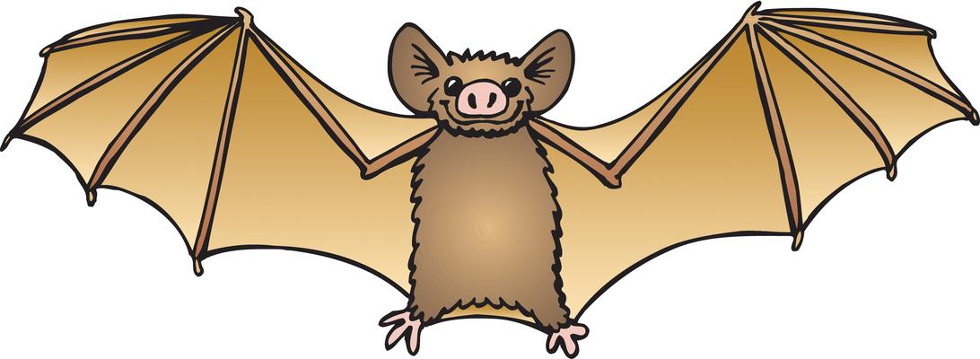 1092x400 Cute Bat Clipart