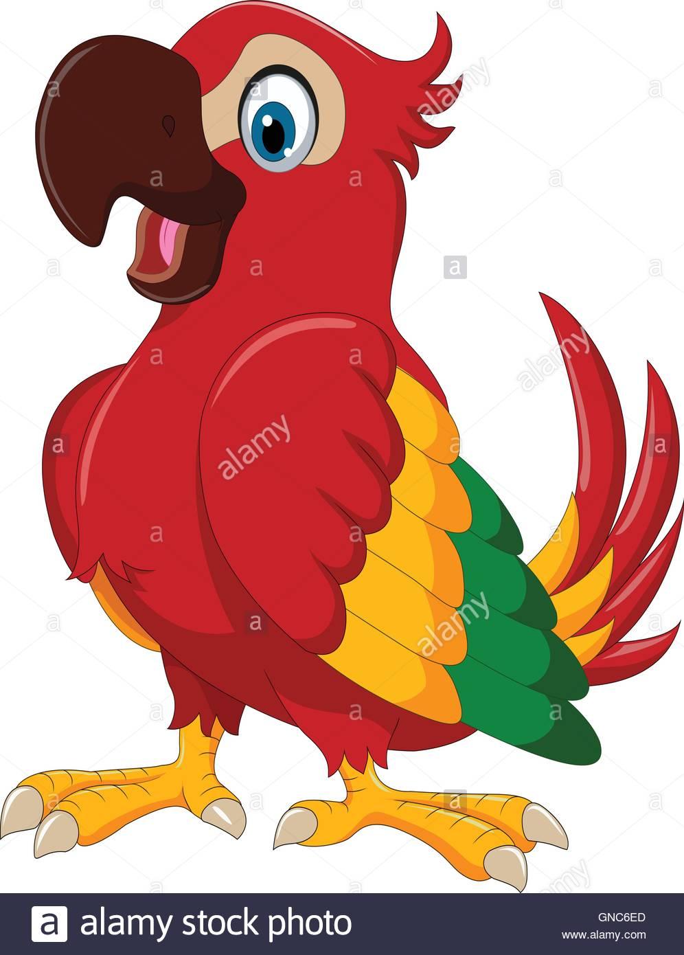 996x1390 Cute Parrot Cartoon Posing Stock Photos Amp Cute Parrot Cartoon