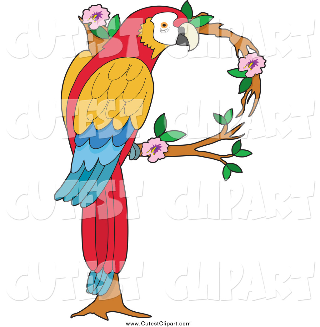 1024x1044 Vector Clip Art Of A Macaw Parrot Forming A Letter P By Maria Bell