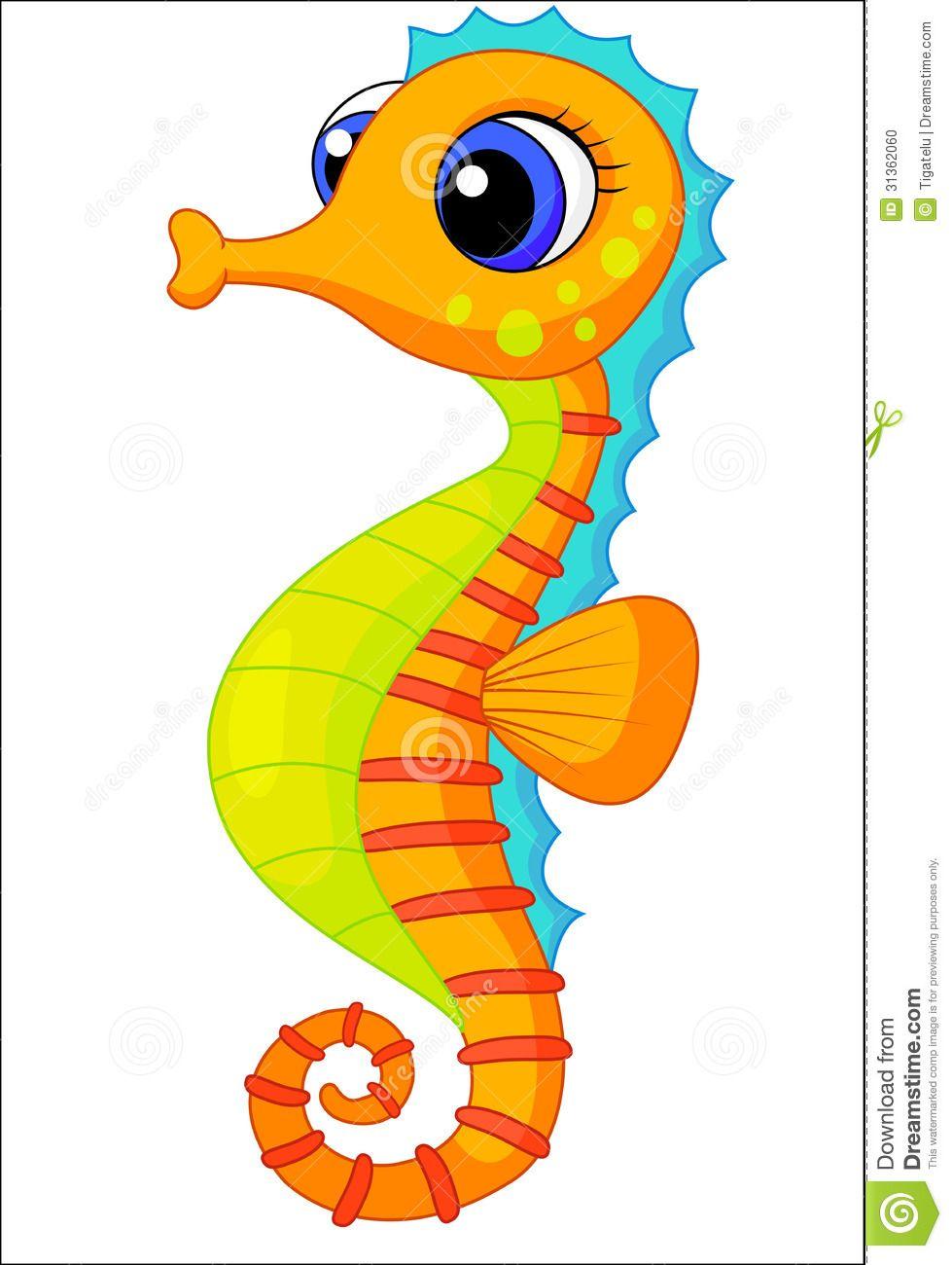 979x1300 Seahorse We Are Cute .sea Animals Seahorses