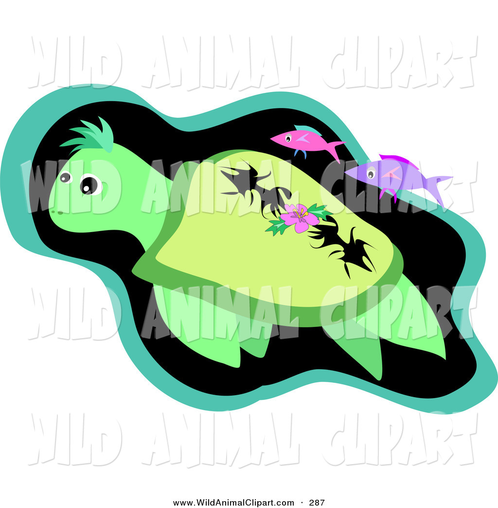 1024x1044 Royalty Free Turtle Stock Wildlife Designs