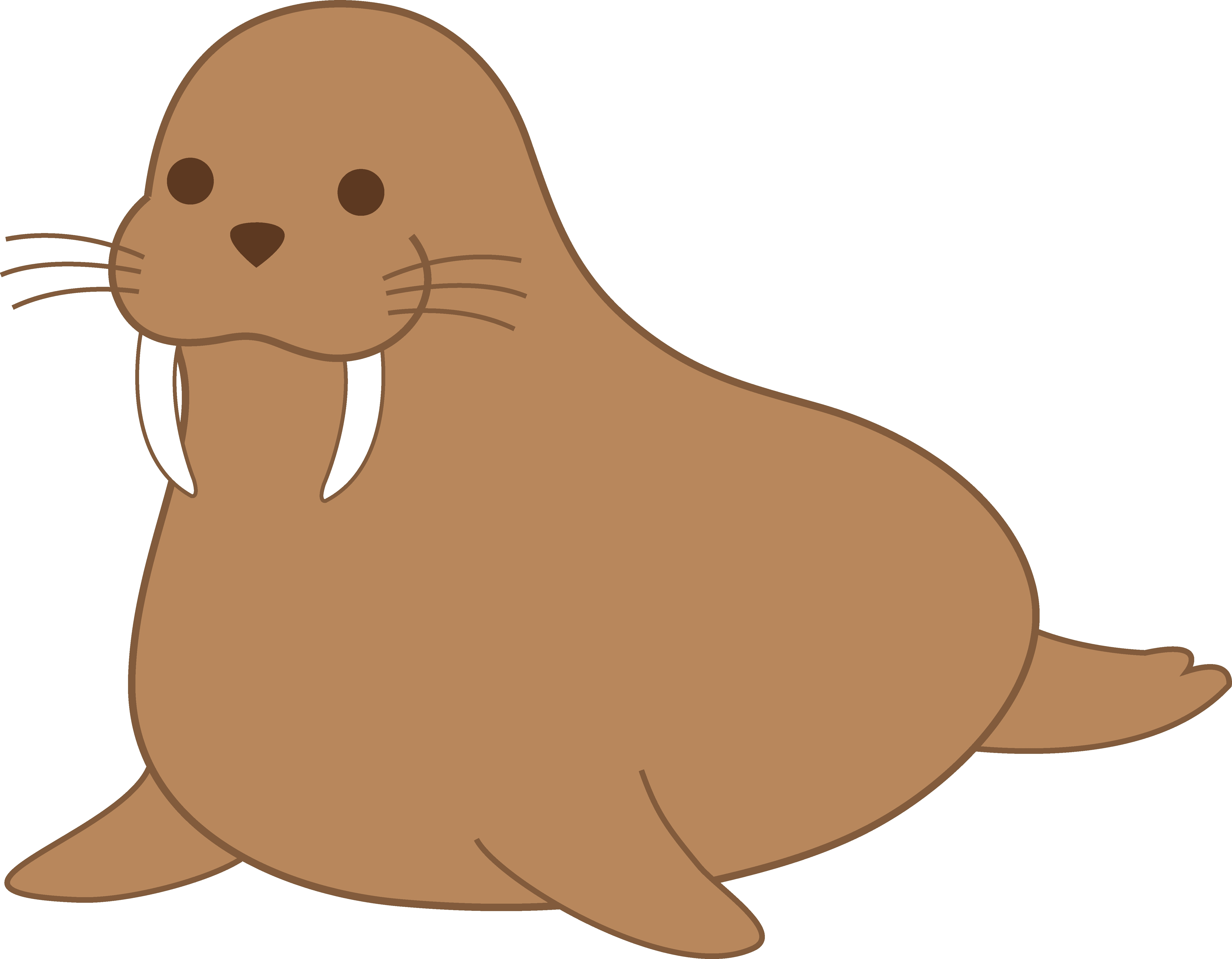 5475x4263 New Walrus Clipart Collection