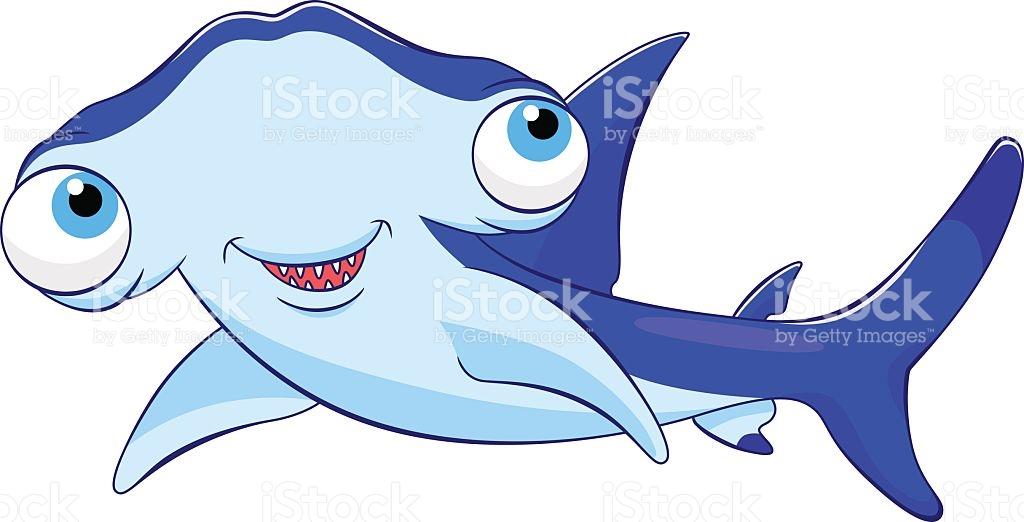 1024x522 Cartoon Hammerhead Shark Find Here More