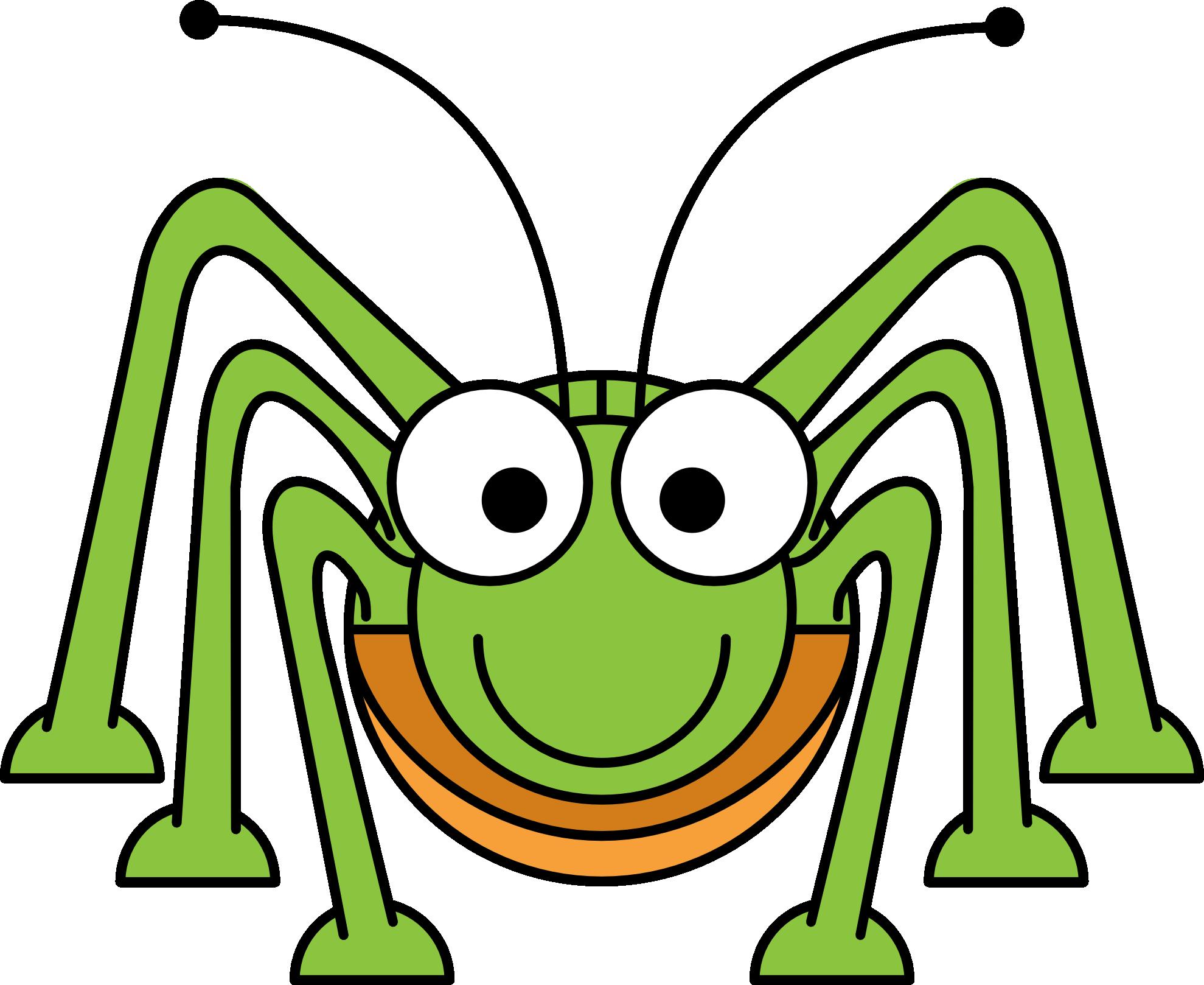 1979x1618 Spider
