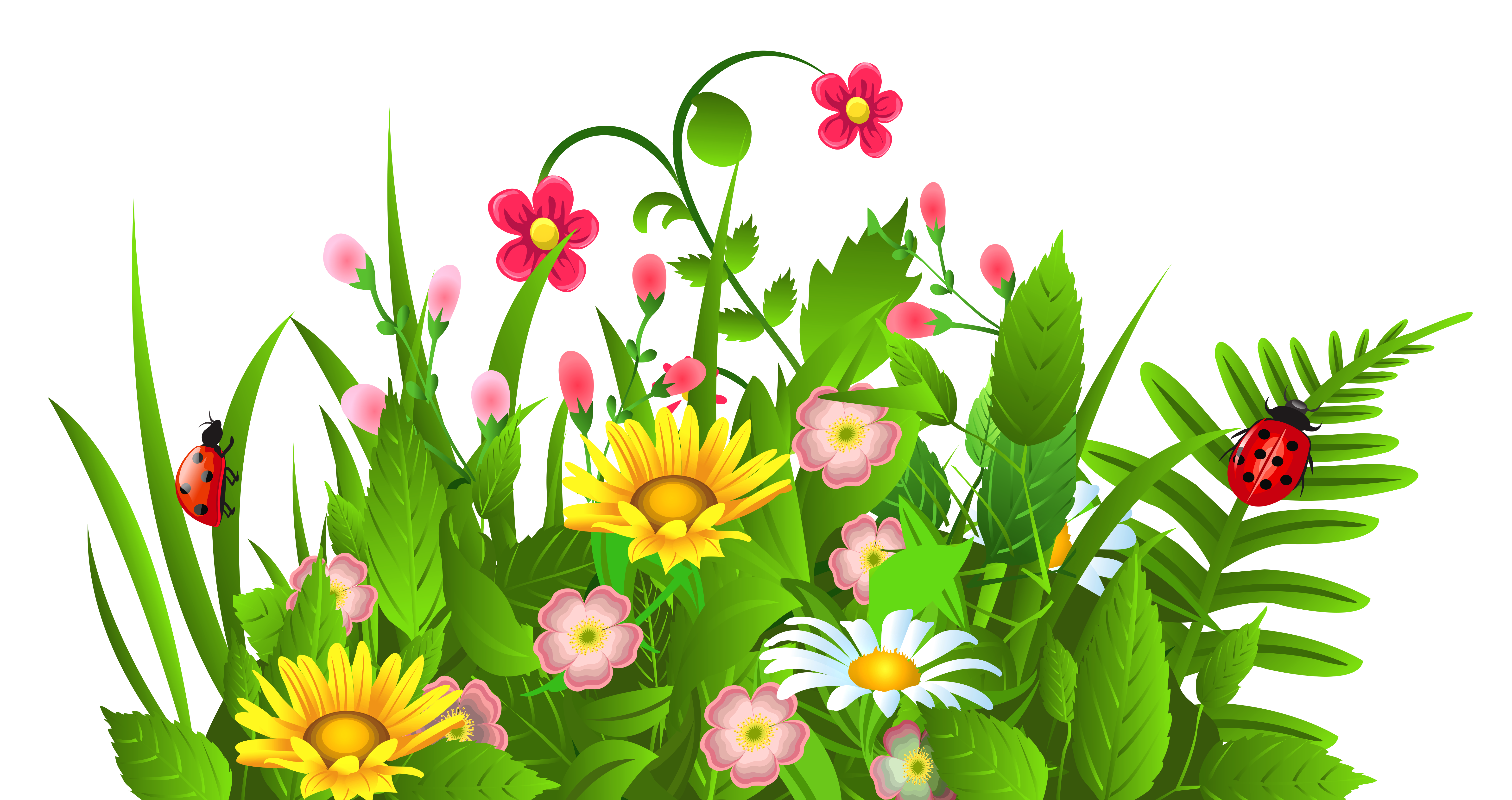 6287x3328 Cute Grass And Flowers Png Clipartu200b Gallery Yopriceville