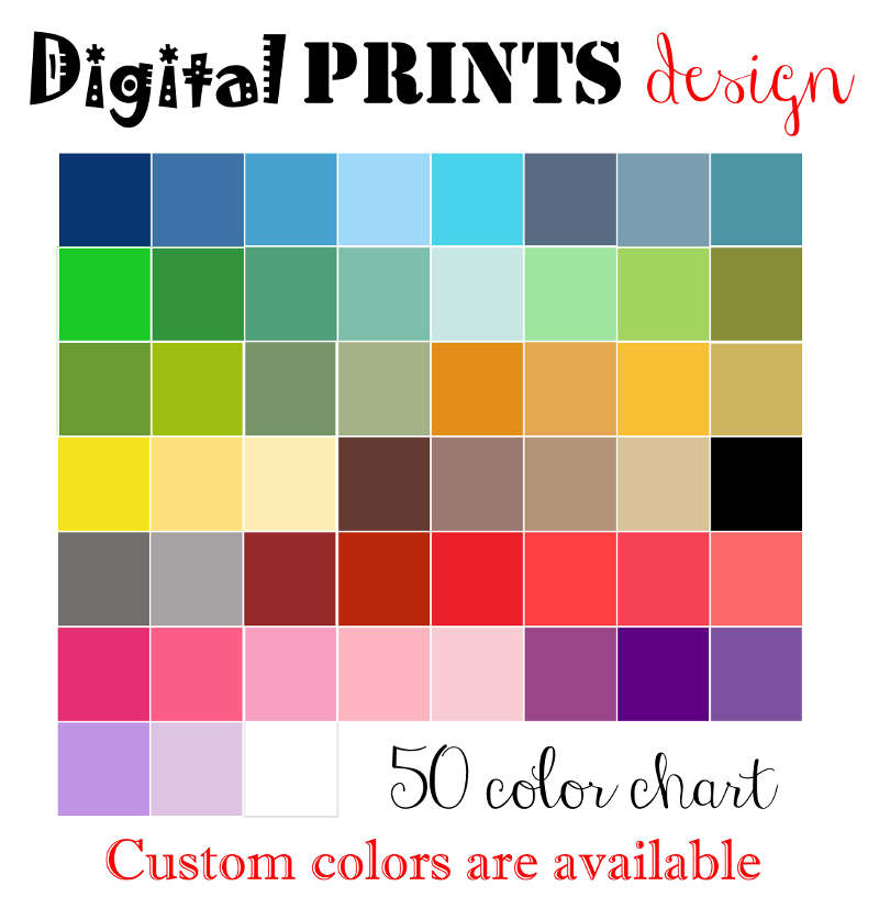 800x836 50 Colors Digital Butterfly Clipart Spring Digital Illustrations