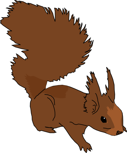 492x593 Cute Squirrel Clipart Clipart Panda