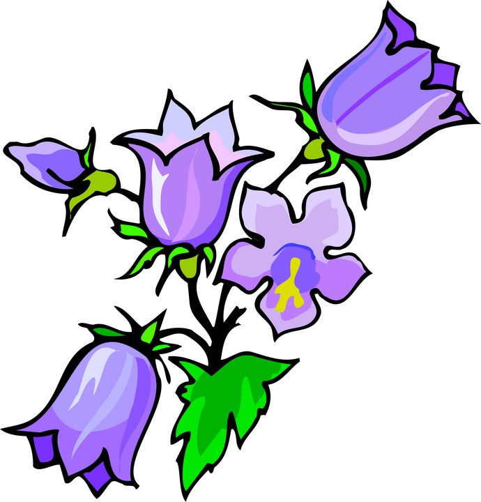 690x720 Clip Art Of Flowers In A Vase Clipart Panda