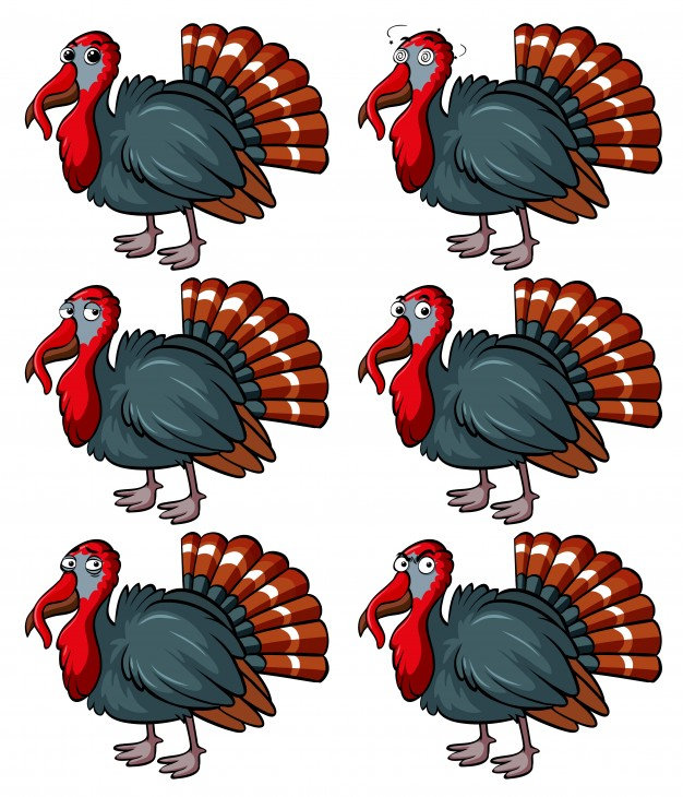 626x730 Turkey Vectors, Photos And Psd Files Free Download