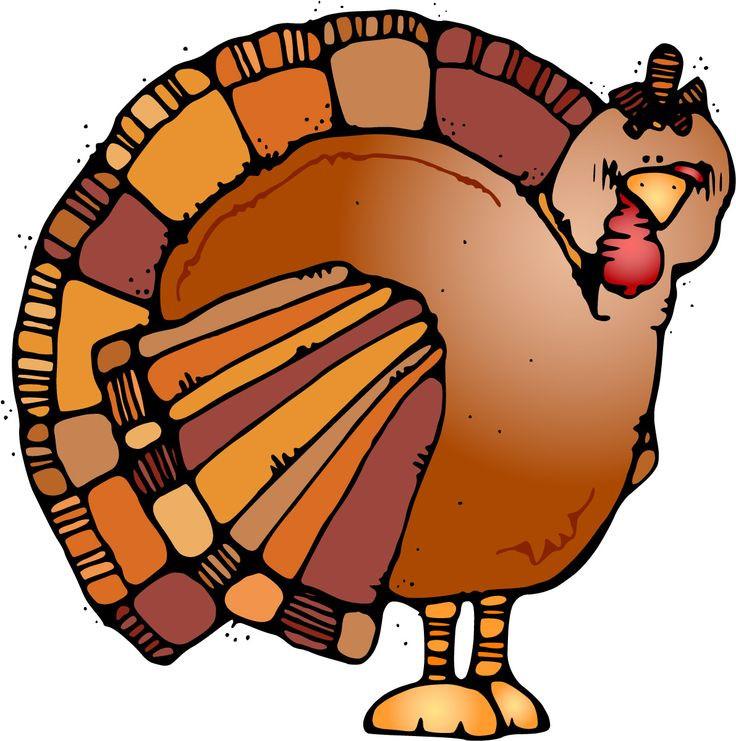 736x741 Best Turkey Clip Art