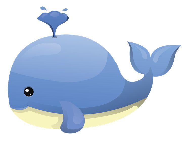 736x557 Cartoon Whale Clipart