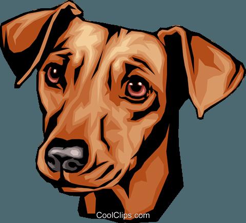 480x434 Dachshund Royalty Free Vector Clip Art Illustration Anim0091