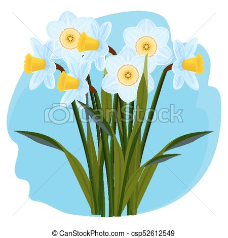 450x470 Bouquet Of Fresh Aromatic Daffodils Of Light Blue Color . Eps