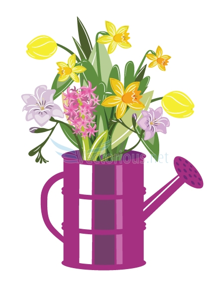438x600 Pictures Of Daffodils Clipart Collection