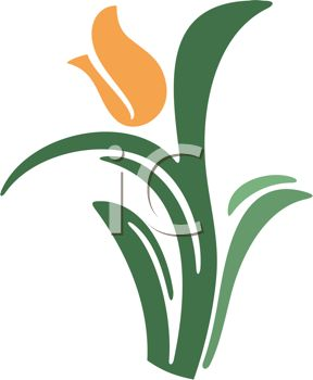 288x350 Tulip Clipart Daffodil Flower