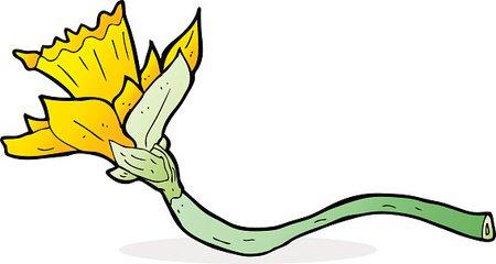 450x240 Cartoon Daffodil Flower Stock Vectors
