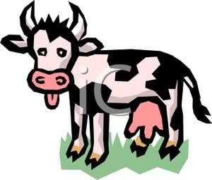 300x255 A Dairy Cow Sticking Its Tongue Out Clip Art Image