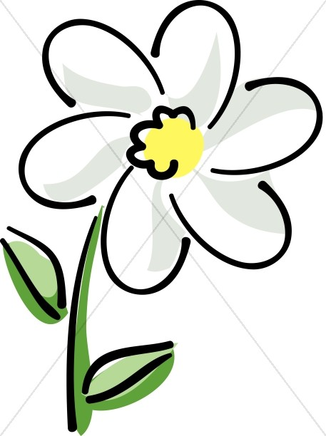 457x612 White Flower Clipart White Daisy With Yellow Church Flower Clipart