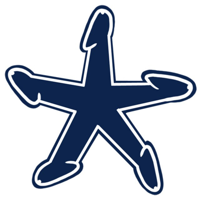 640x640 Dallas Cowboys Logo Dickified Strange Beaver