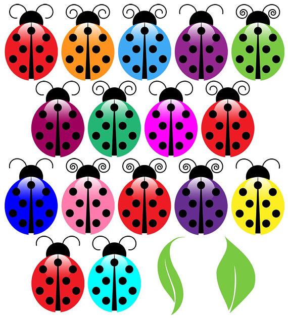 570x630 Ladybugs Clip Art Clipart, Ladybug Clip Art Clipart