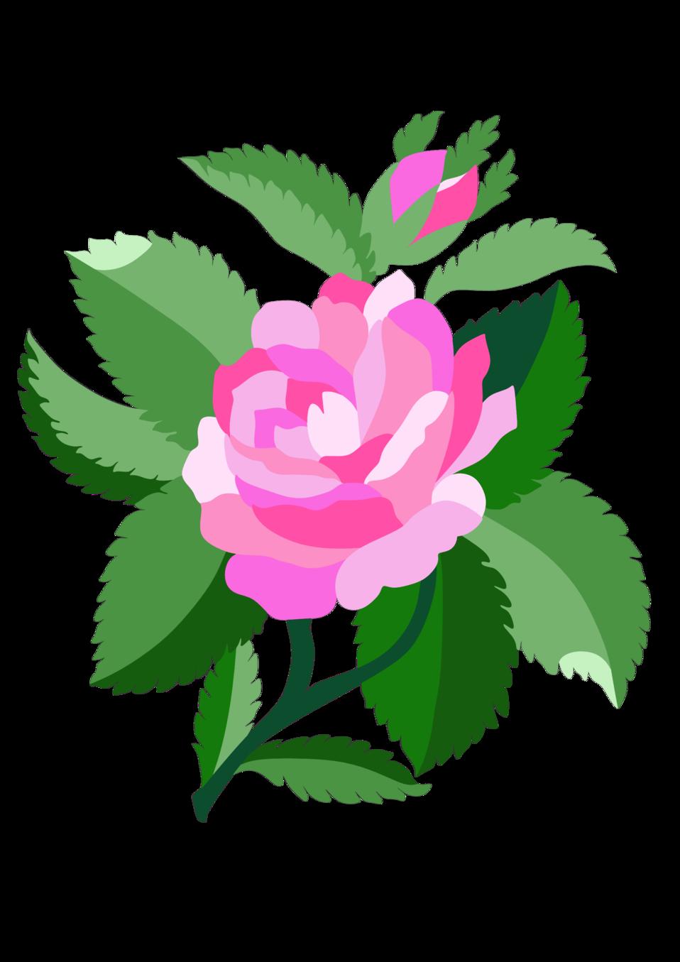 958x1355 Public Domain Clip Art Image Design For Damask Rose Id