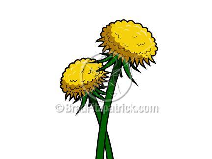 432x324 Dandelion Clipart Animated