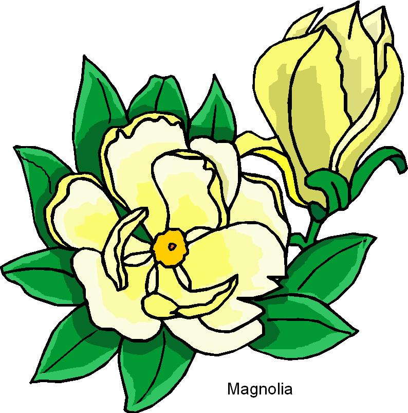 794x803 Flower Dandelion Clip Art