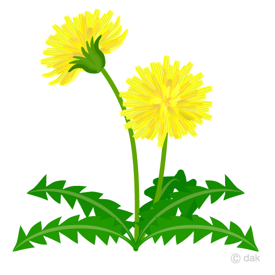 540x540 Free Dandelion From The Side Clipart Cartoon Amp Clipart