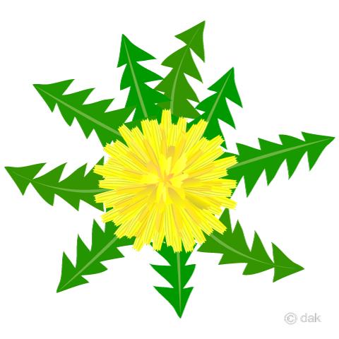 480x480 Free Dandelion Cartoon Amp Clipart Amp Graphics [Ii]