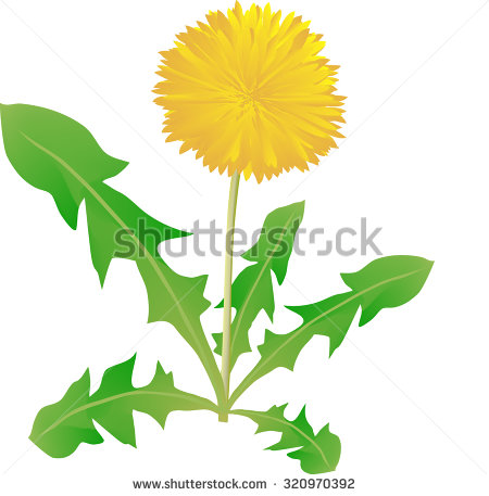 450x457 Weed Flora Green Clipart