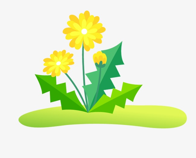 650x526 Dandelion, Cartoon, Hand Painted Png Image And Clipart For Free