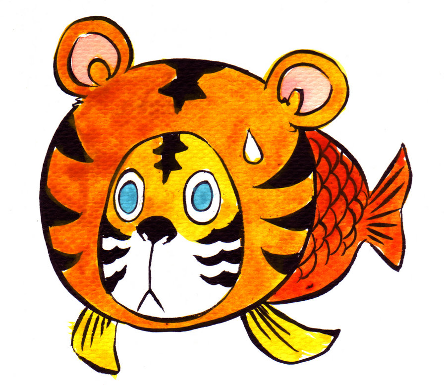 900x777 Tiger Fish Design Simple Drawing Of A With Clipart