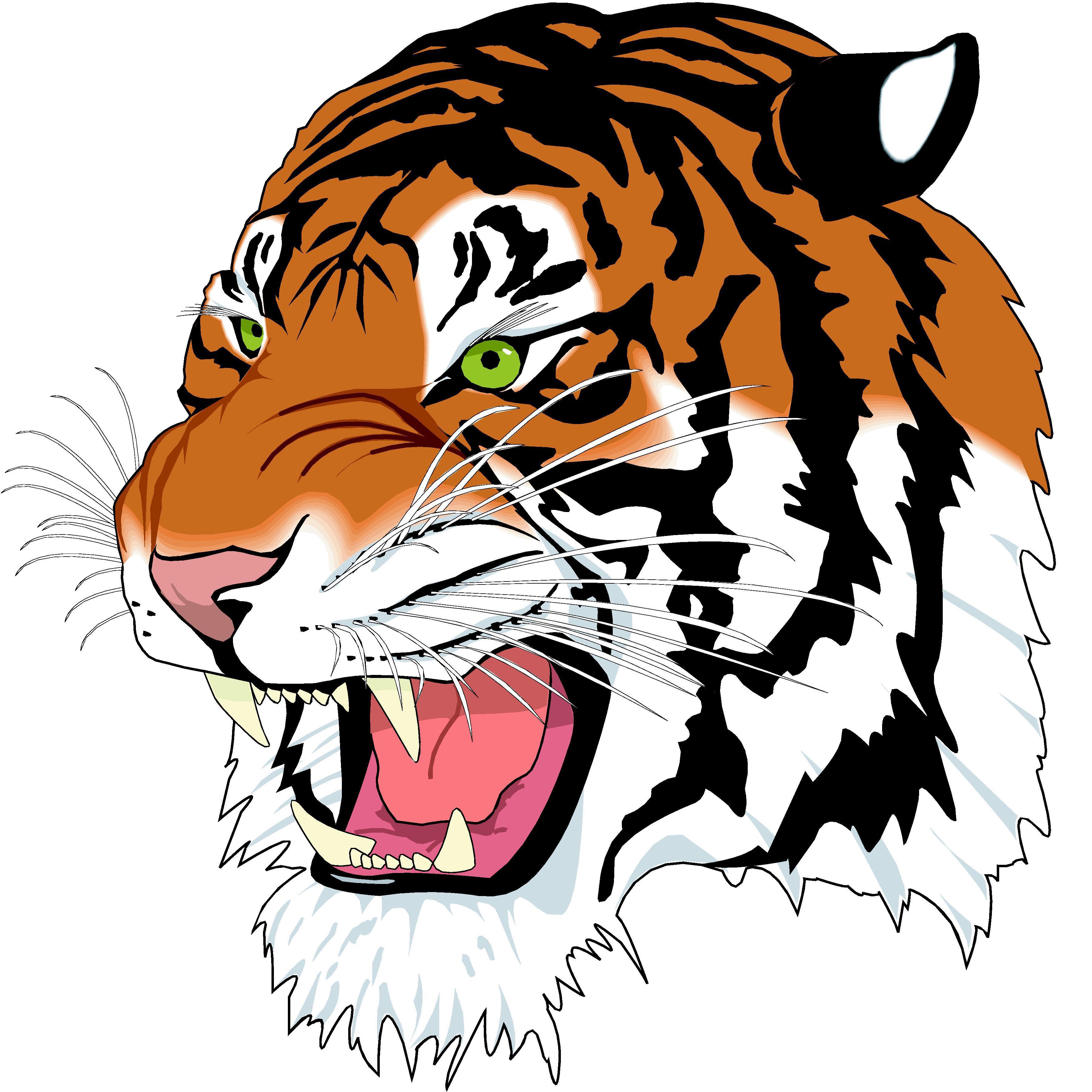 3600x3600 Tiger Images Clip Art