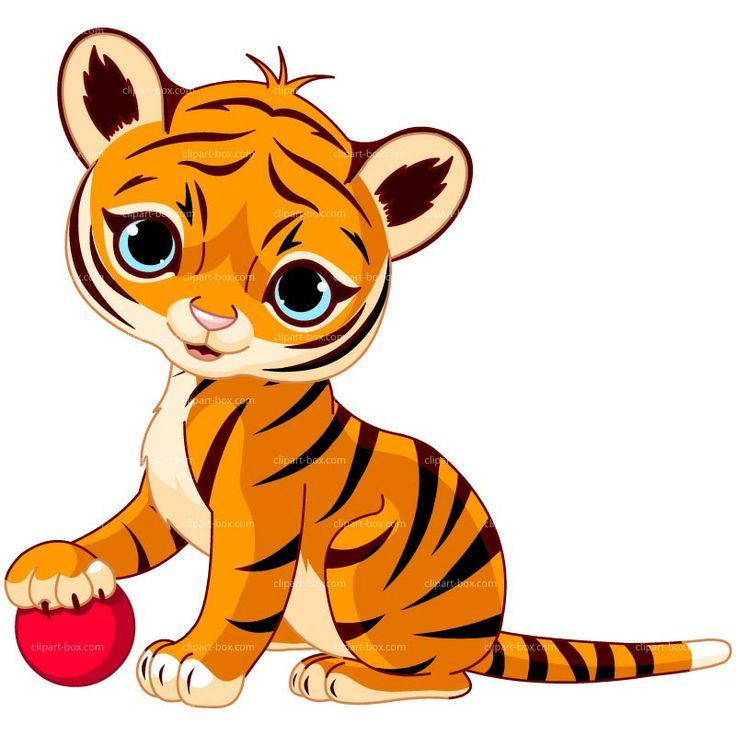 736x736 Big Cat Clipart Rainforest Tiger